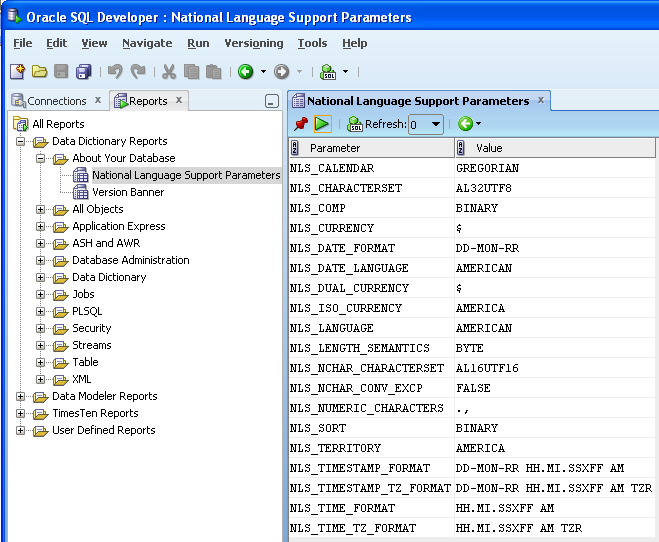 Viewing Database Version and Globalization Information