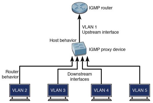 Igmp Proxy