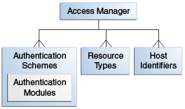 OAM Policy Components