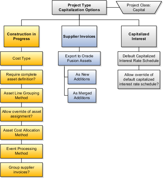 oracle fusion applications project management implementation guidethis diagram illustrates the capitalization options for project types