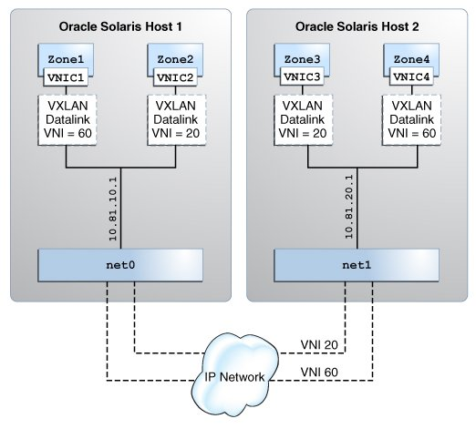 Using VXLAN With Zones - Managing Network Virtualization and Network