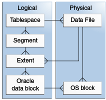 Developing a Database Growth Management Strategy - 11g