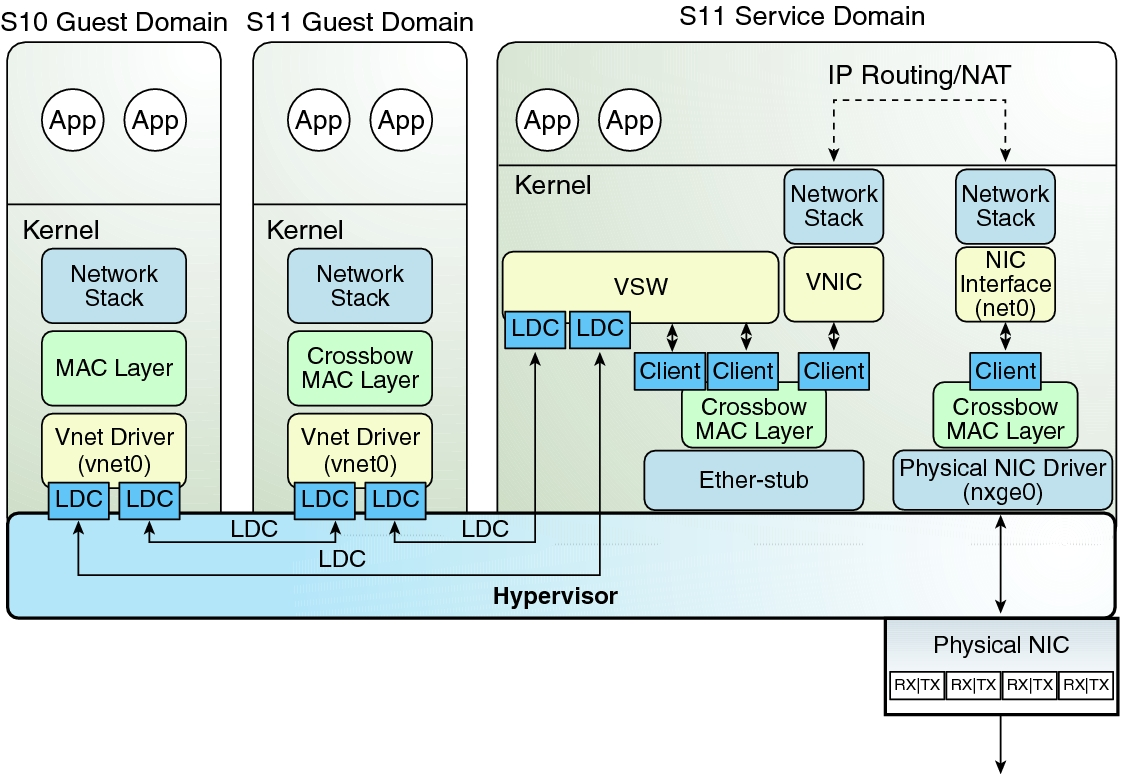 Oracle Network System Diagram - Circuit Connection Diagram •