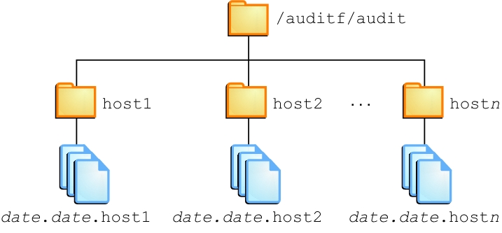 How to create zfs file systems for audit files managing for Show zfs pool version