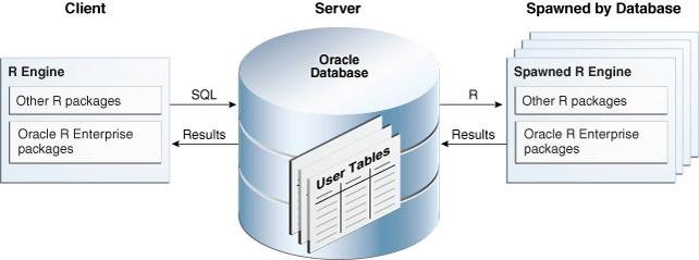 Oracle R Enterprise Architecture - Oracle enterprise architecture