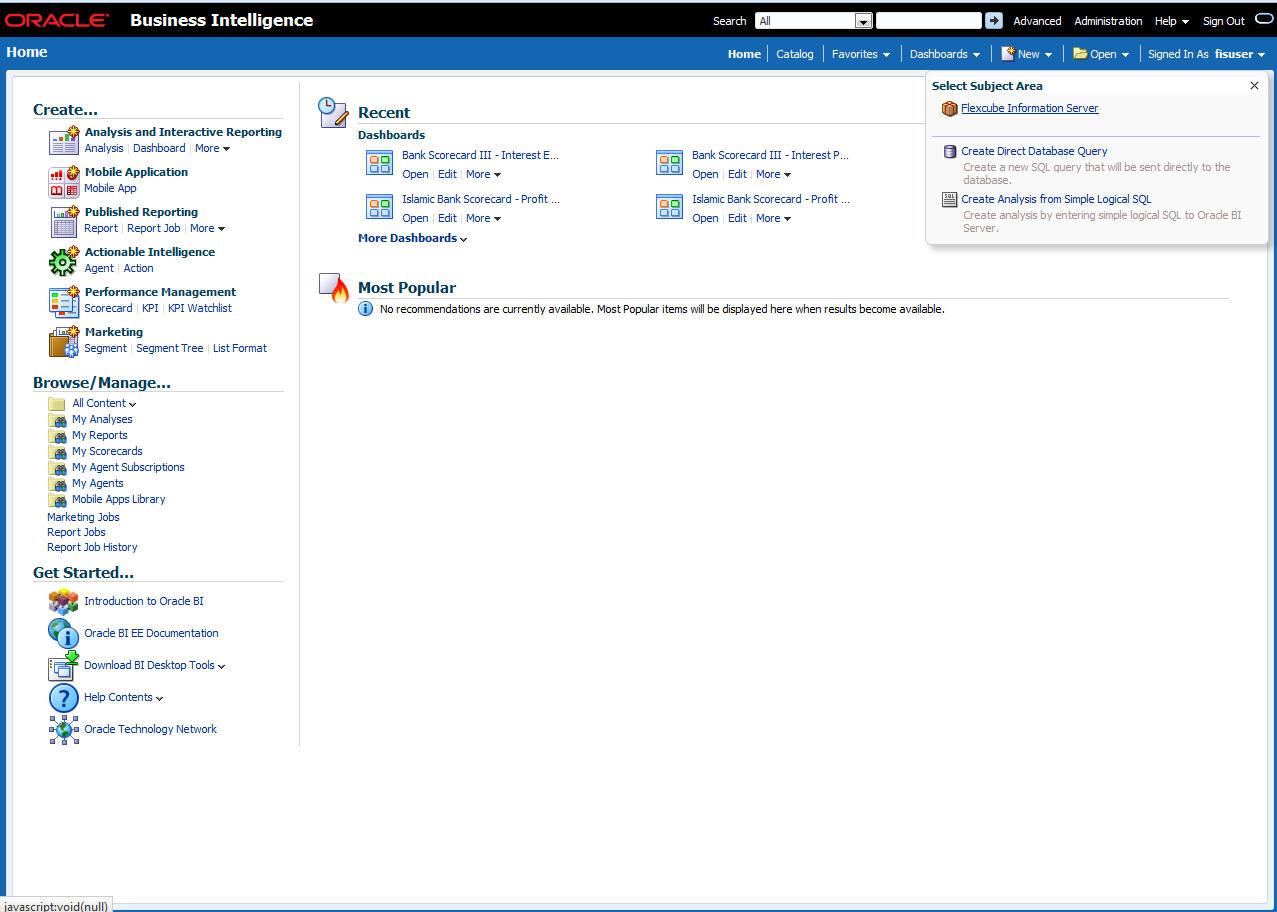 2  Oracle FLEXCUBE Information Server