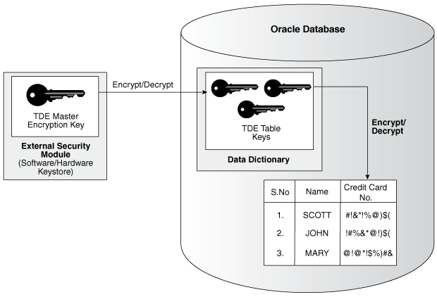 Introduction to Transparent Data Encryption