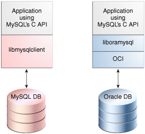 how to connect phonegap with mysql database