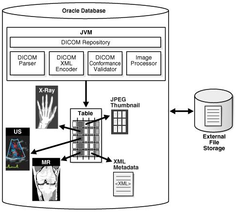 Oracle Multimedia DICOM Concepts