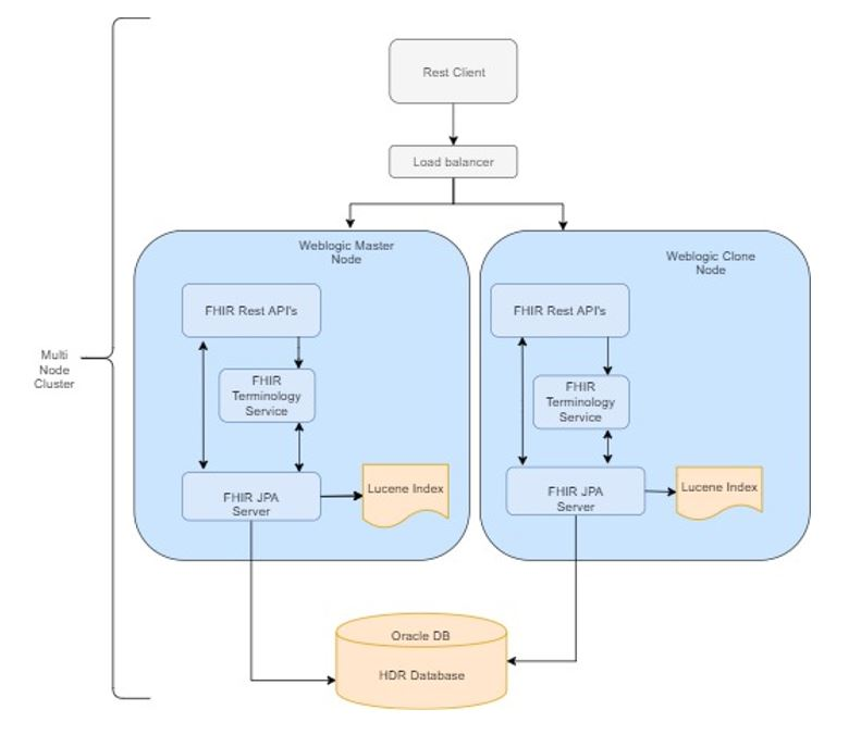 Hdr Fhir Server Architecture