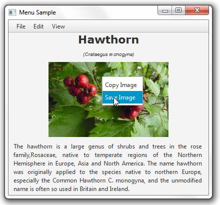 Using JavaFX UI Controls: File Chooser | JavaFX 2 Tutorials and