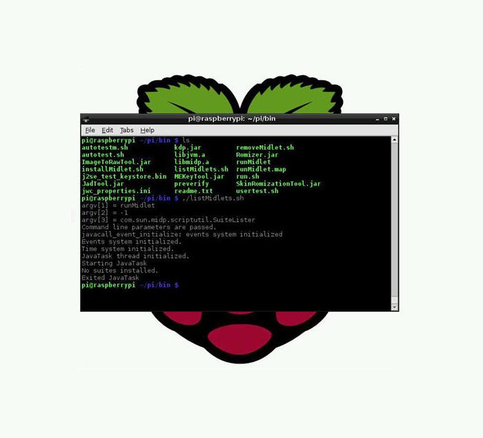 writing a terminal emulator windows