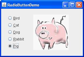 A snapshot of RadioButtonDemo